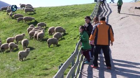 한국 축산업의 신동력, 산지생태축산농장