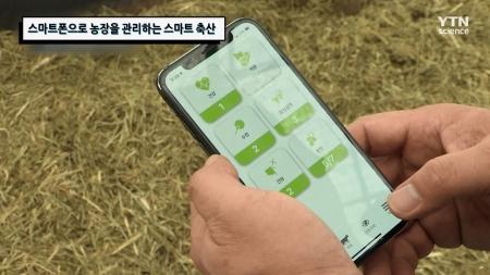 스마트폰으로 농장을 관리하는 스마트 축산