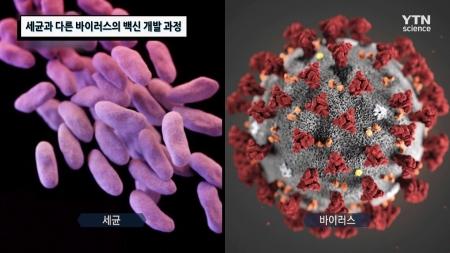 세균과 다른 바이러스의 백신 개발 과정