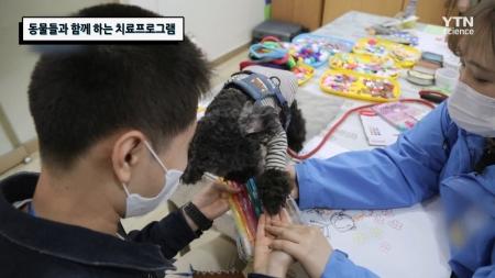 동물들과 함께 하는 치료프로그램