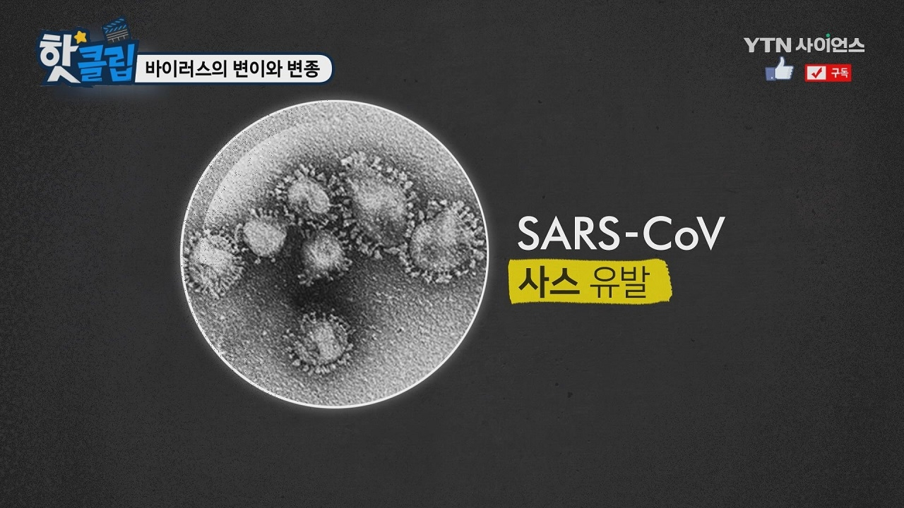 바이러스의 변이와 변종