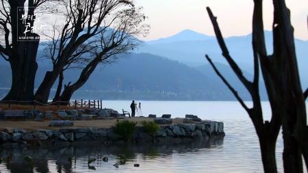 도시로 온 자연, 공존을 꿈꾸다 : 서울·경기