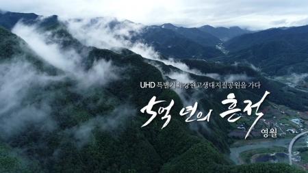 [강원고생대지질공원을 가다] 5억 년의 흔적 5부_영월