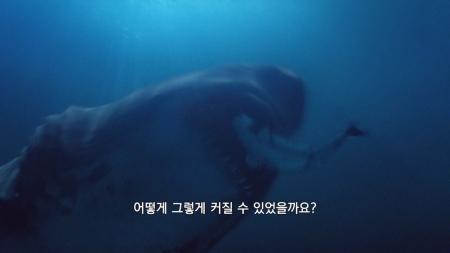 거대동물 X파일_01회_사라진 강자 티타노보아와 파라케라테리움