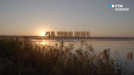 거대동물 X파일_02회_기후 변화의 희생자, 메갈로돈과 거대 늘보