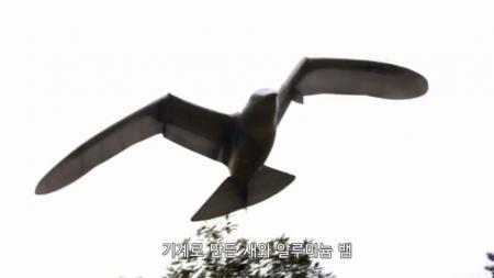 고 투 더 퓨처 2050_1회_세상을 바꿀 동물 로봇