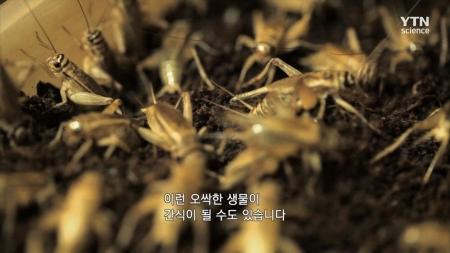 고 투 더 퓨처 2050_3회_식탁을 바꿀 푸트테크