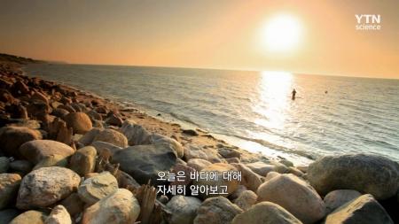 고 투 더 퓨쳐 2050_12회 바다에서 찾은 신재생 에너지