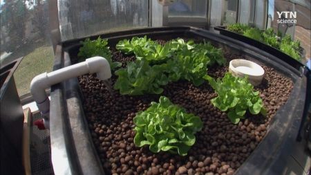 고 투 더 퓨처 2050_20회 기후 변화와 미래의 농업