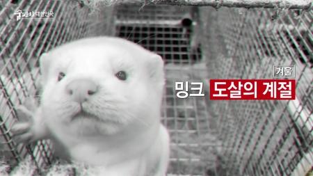 맑은 공기, 숨 편한 대한민국 77회