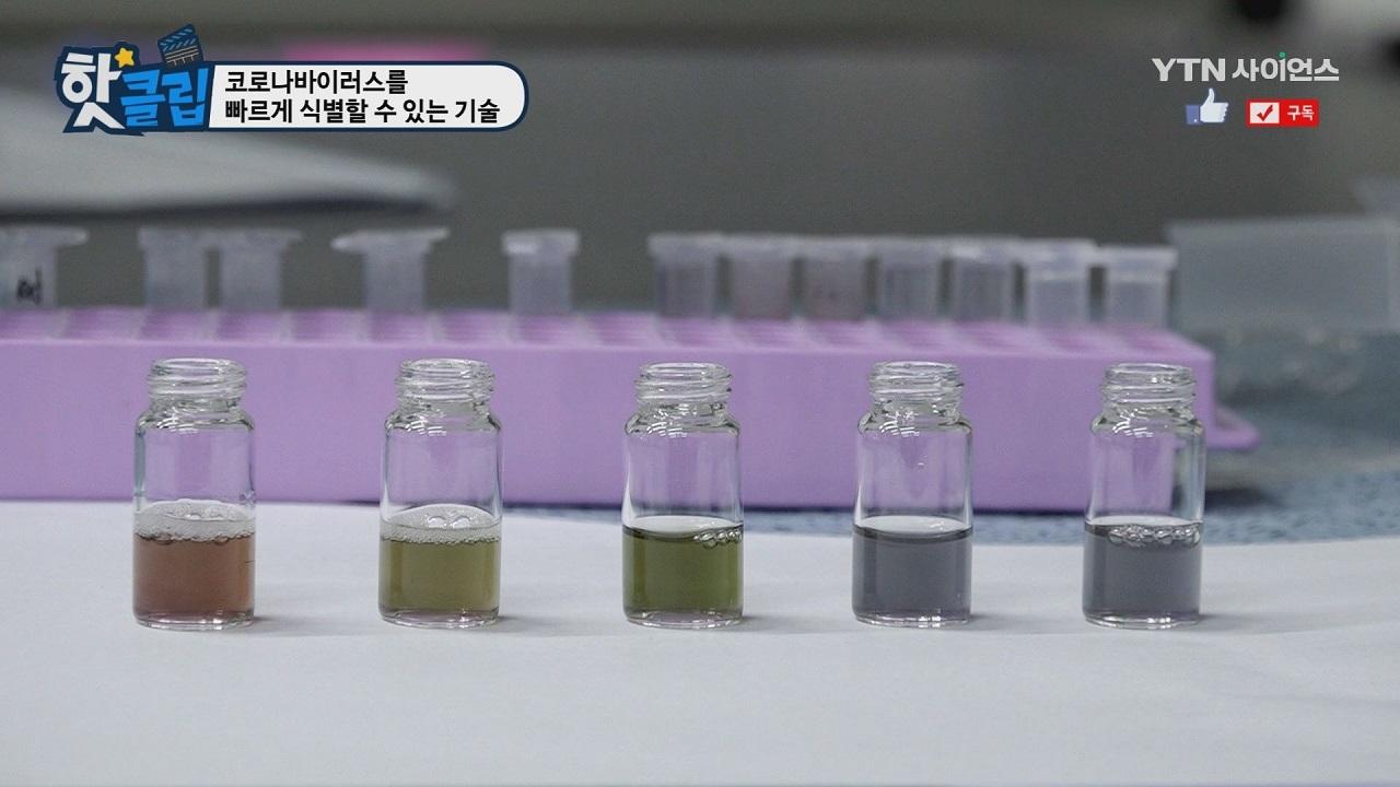 코로나바이러스를 빠르게 식별할 수 있는 기술