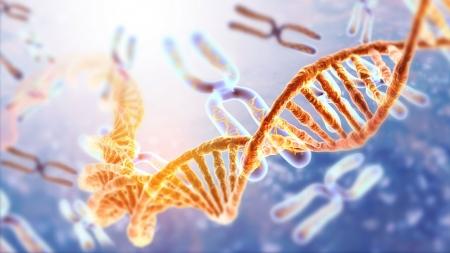인간의 유전자 편집, 찬성? 반대?