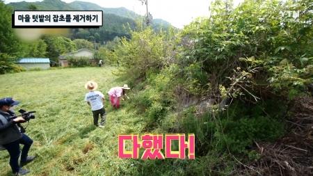 마을 텃밭의 잡초를 제거하기