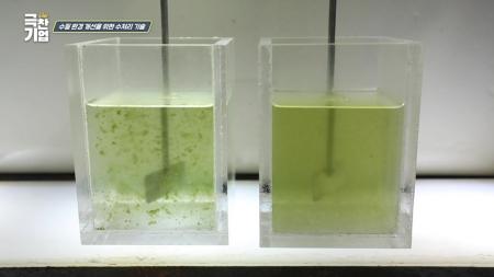 수질 환경 개선을 위한 수처리 기술