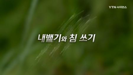 야생의 강자_5회 내뱉기와 침 쏘기