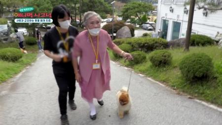 [애니멀 시그널] 사람들의 마음을 치유해주는 '동물 매개 치료견'