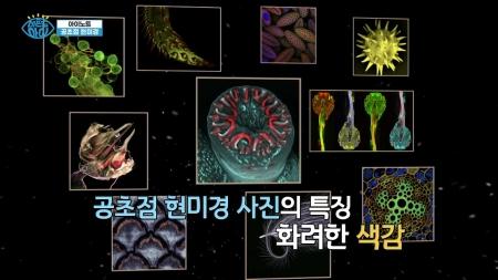 [아이 노트] 공초점 현미경